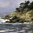 Point Lobos - Stock Photo