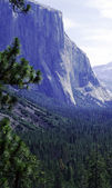 Yosemite National Park — Foto Stock