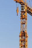 Crane crop — Stockfoto