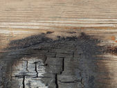 Burned wood — Stok fotoğraf