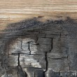 Stock Photo: Burned wood