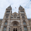 Постер, плакат: Natural History Museum London UK