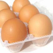 很多鸡蛋 — 图库照片