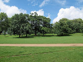 Kensington gardens, London — Foto Stock