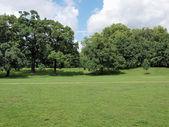 Kensington gardens, londra — Stok fotoğraf