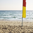 Warning flag at the tropical beach — Stock Photo