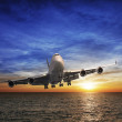 Evening flight — Stock Photo