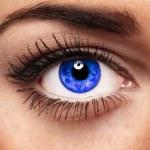 The Eye — Stock Photo #6498792