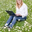 Girl with laptop on grass field in park — Stock Photo #6093298