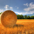 Hay bale on a field in late summer - Stock Photo