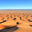 Sand dune in Sahara Desert at sunset — Stock Photo