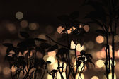 The silhouette of dried bushes in the background blurry lights — Stok fotoğraf