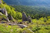 Krásná krajina - kavkazské hory — Stock fotografie