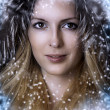 Christmas winter woman. Beauty portrait — Stock Photo