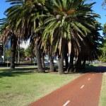 Bicycle path in Perth, Australia — Stock Photo