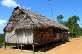 House in an Indian community in Peruvian Amazon — Stock Photo