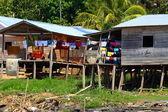 Indian community in Peruvian Amazon — Stock Photo