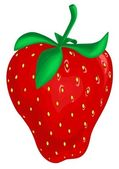 Strawberry — Vector de stock