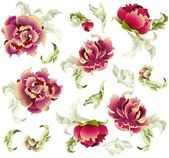 Fondo transparente de un adorno de flores, fondos de moda moderna — Vector de stock