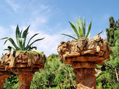 Natural Stone Planters. — Stock Photo