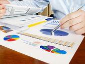Analisando os gráficos de investimento. — Foto Stock