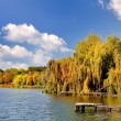 Autumn landscape Colorful trees in lake of Ukraine — Stock Photo
