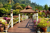 Wooden bridge in a tropical garden setting — Stock Photo