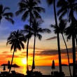 Coconut palms on sand beach in tropic on sunset — Stock Photo #6378441