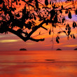 Tropical colorful sunset, Thailand. — Stock Photo #6397197