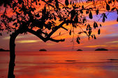 Tropical colorful sunset, Thailand. — Stock Photo