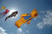 çeşitli model uçurtma — Stok fotoğraf