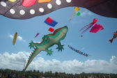 Various model of kites — Stock Photo