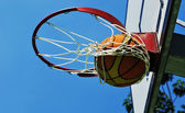 Swish basquete — Fotografia Stock