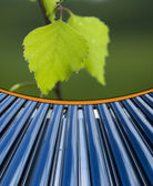 Leaf and colar collector tube — Stock Photo