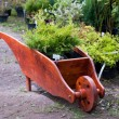 Stock Photo: Wooden wheelbarrow