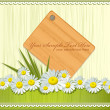 Vector greeting card with daisies and abstracts background — Vector de stock