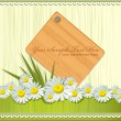 Vector greeting card with daisies and abstracts background — Stock vektor