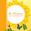 Vector holiday background with a round card, sunflowers — Stockvectorbeeld