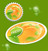 Vector stickers and bottle cap with a juicy, fresh background wi — Stock Vector