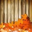 Vector autumn leaves on the background of a wooden wall — Stock Vector