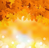 Vector autumn leaves on a bright sunny background — Stock Vector