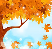 Vector autumn tree maple leaves against the blue, bright sky — Stock Vector