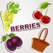 Vector set of icons: Berries — Stock Vector #6317406