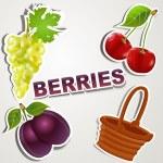 Vector set of icons: Berries — Stock Vector #6317406