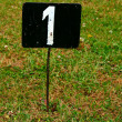 Metal Number One in Grass — Stock Photo #5855503