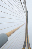 Rope bridges and towers. — Stock Photo