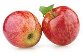 葉と赤いりんご — ストック写真