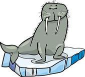 Cartoon Walrus on floating ice — Stock Vector