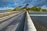 Bridge at Ardmore bay — Stock Photo