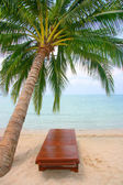 Canvas chair on tropical beach — Stock Photo